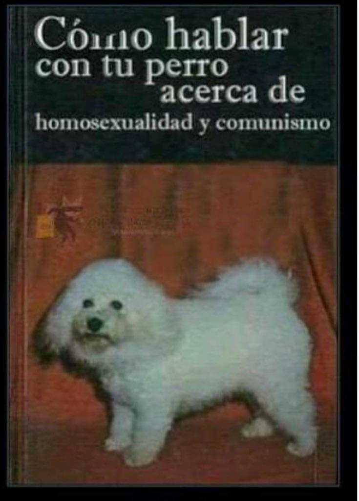 Los perros saben cosas que tú no. https:...
