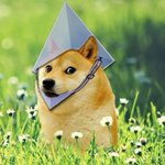 Image for the Tweet beginning: Dogecoin Is Helping Ethereum Solve