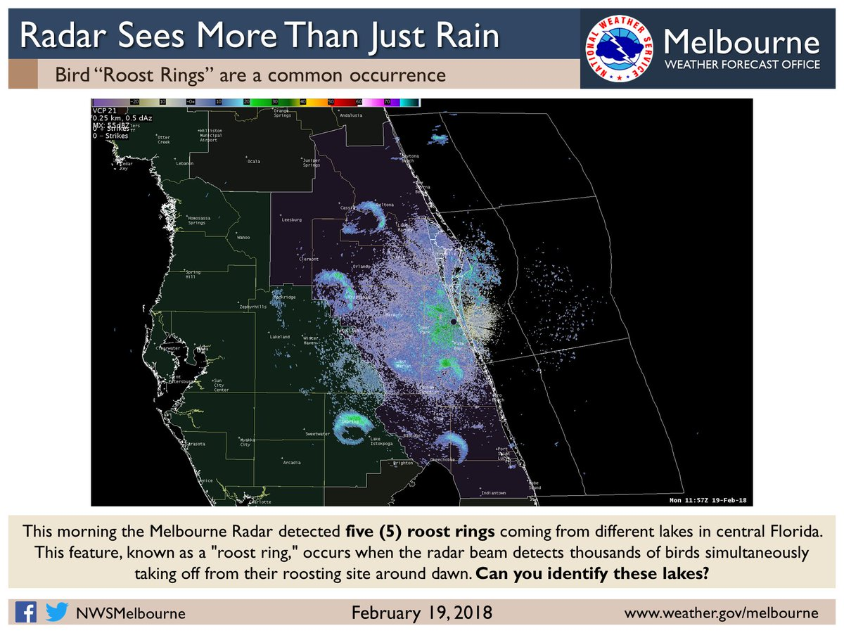 NWS Melbourne on Twitter: