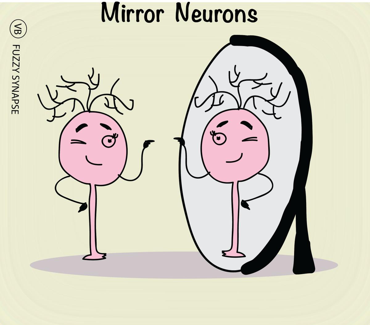 """Képtalálat a következőre: """"mirror neurons"""""""