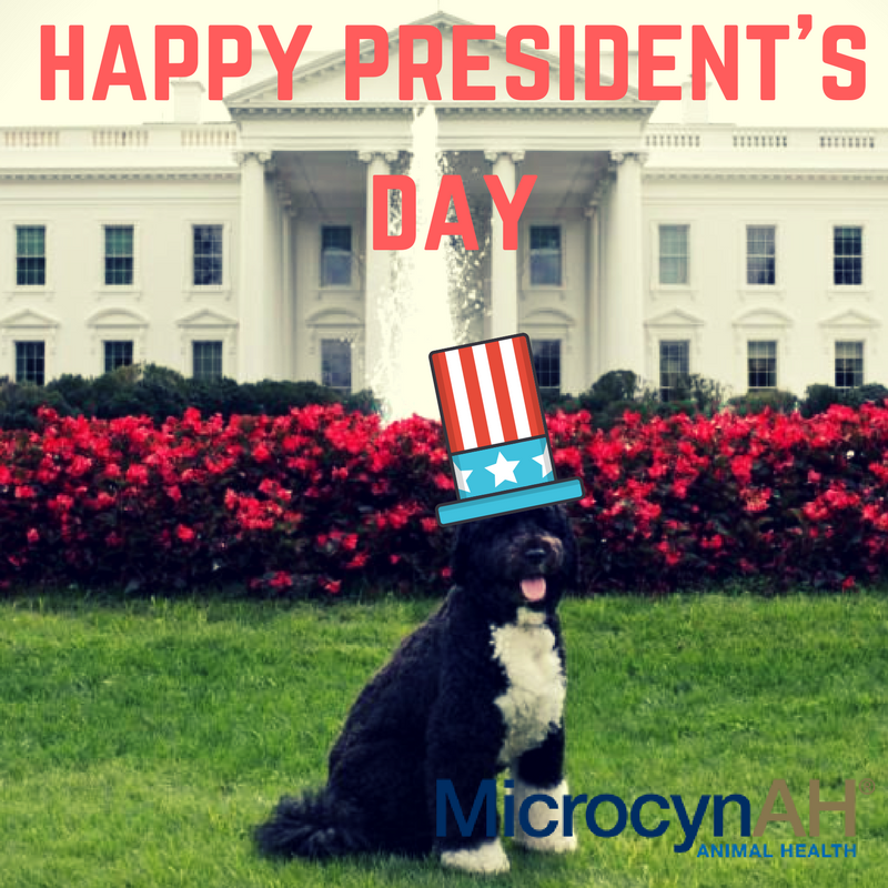 #PresidentsDay2018 https://t.co/mx9K5rCR...