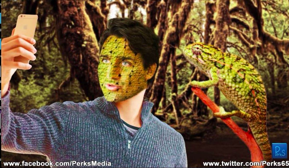 Quand Justin rencontre un caméléon, ce dernier conserve son apparence et son identité. Justin lui, fidèle à son vide identitaire, devient caméléon.  Avouez qu'elle est pas mal . Image via Guy Perkins sur Facebook