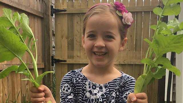 6-year-old Connecticut girl dies of flu complications https://t.co/wrfbbUwUNR