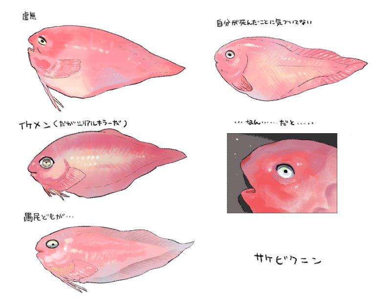 フォルダを漁ってたらサケビクニンの画像検索結果の印象スケッチがでてきた。眼力がすごいうえに個性があると思ったんですよね(参照元はリプライにつづきます)