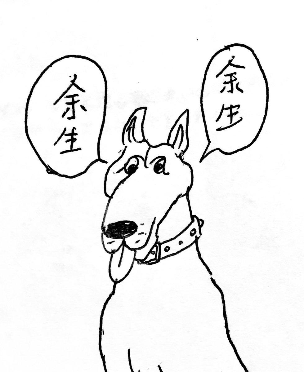 犬の鳴き声を分析するアプリがもたらした弊害