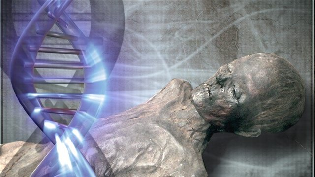 DNA tests could determine if pirate Black Sam Bellamy has been found: https://t.co/DJkxLfCYiF #KAKEnews