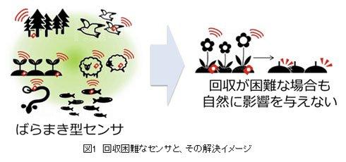 環境に優しい「ツチニカエルでんち」、NTTが作製 いたる場所にセンサーが使われる...