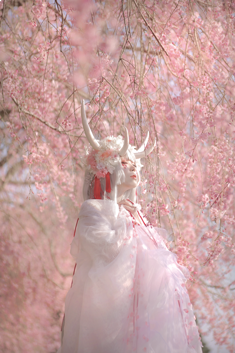 """【創作】 『  祈り花  』  """"   束の間の幸福としても  """"  Allphotoユラ氏(@Saotome00)"""