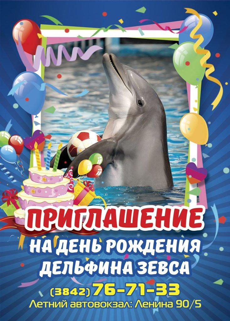 С днем рождения картинка с дельфином, открыток цветами