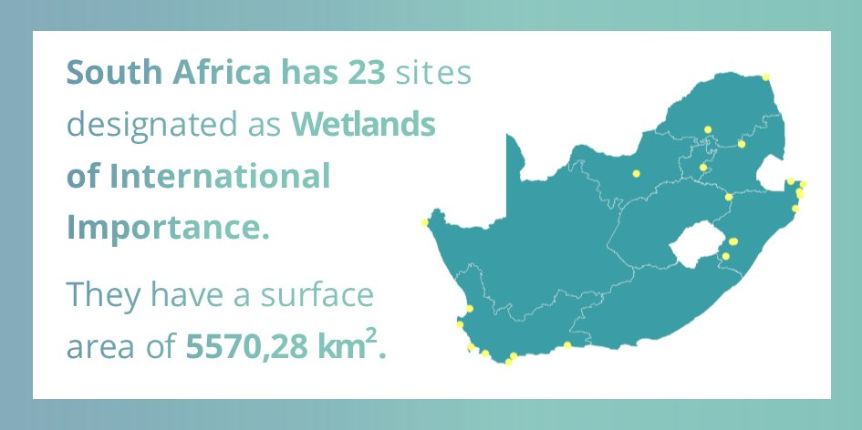 See how @CityTshwane celebrated #WorldWetlandsDay 2018 with @WaterResearchSA @SANBI_ZA @DWS_RSA @ICLEIAfrica  https://t.co/q60pJbFArR  #Wetlands for a #sustainable urban future.