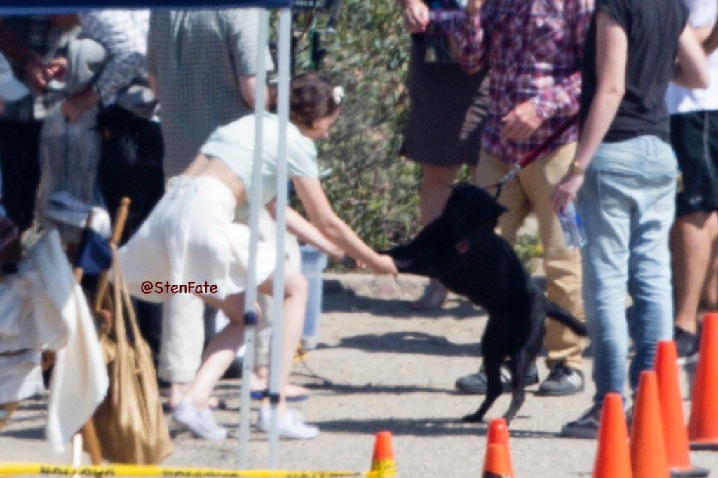 Kristen Stewart dancing with her dog on...