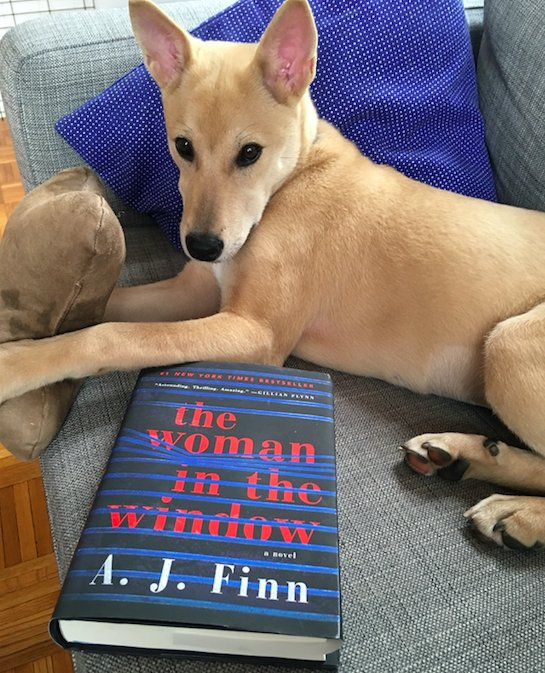 Get your paws on a great book and a pal to read with! #LoveYourPetDay