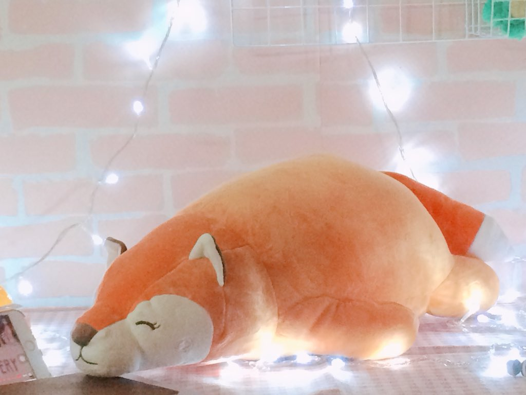 พร้อมส่ง 💓 ตุ๊กตาสุนัขจิ้กจอกตัวส้ม 🍊 ตั...
