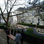 L'exposition #DernièresAcquisitions ouvre ses portes ce weekend au Musée Jean-Lurçat. Le @Museum_Angers va y exposer certaines belles pièces acquises récemment. Mais avant il a fallu les transporter 💪🚚⚠️(ici l'okapi) #CultureAngers 1/2
