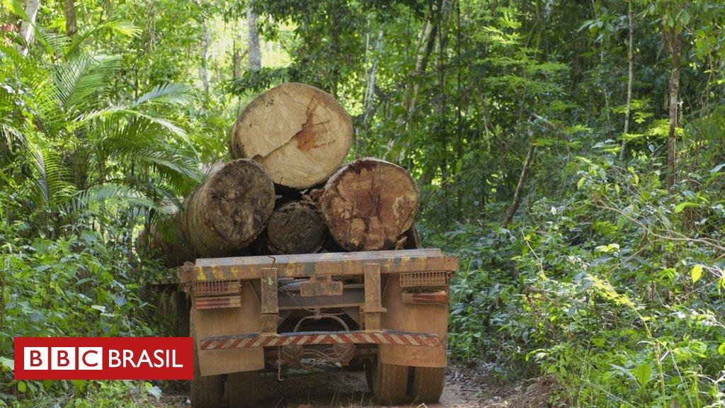 Áreas de conservação desmatadas na Amazônia estão perdendo proteção do governo, aponta estudo nos EUA https://t.co/dsFuVJO1w4