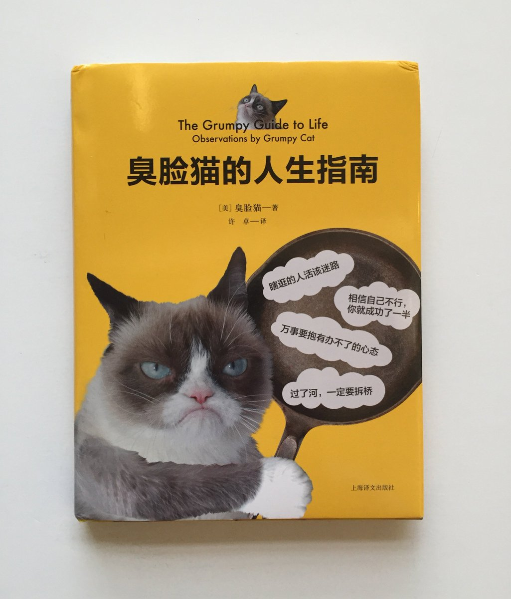 A Grumpy Guide to Life...in Simplified Chinese! @RealGrumpyCat