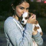 RT @SelenaFanClub: Charlie appreciation post 🐶 #Lo...