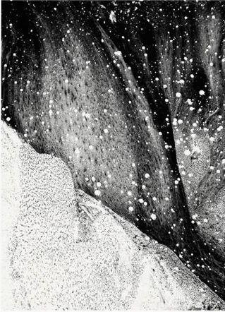 Au cœur de littoraux, montagnes, forêts, sous la pluie, dans le froid de la nuit, Yann Bagot dessine à l'air libre, livrant sur papier les empreintes de la singularité de chaque paysage. franceculture.fr/emissions/les-…