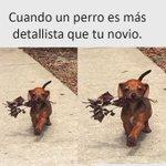 RT @tupensamiento19: #MiHallazgoInesperadoEs 😅😅🙊 h...