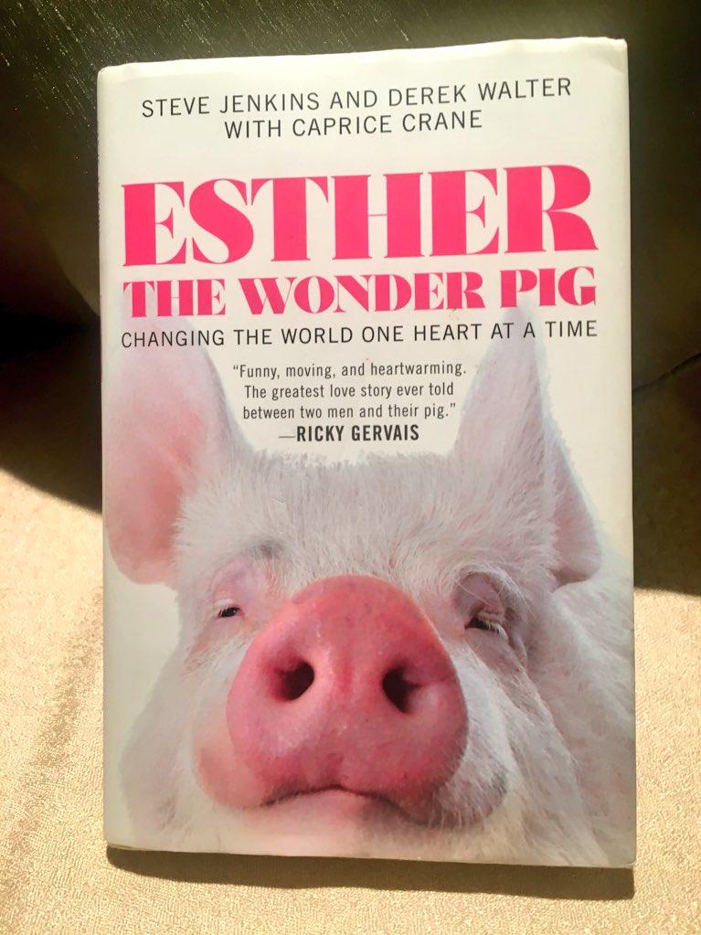 Estherthewonderpig Hashtag On Twitter