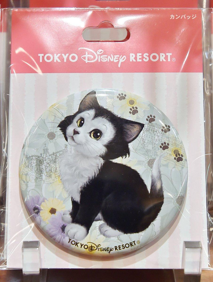 東京ディズニーランド 猫キャラクターグッズマリーたちの缶バッジ5種類が本日新発売☆ シンデレラのルシファーとわんわん物語のサイとアムも!