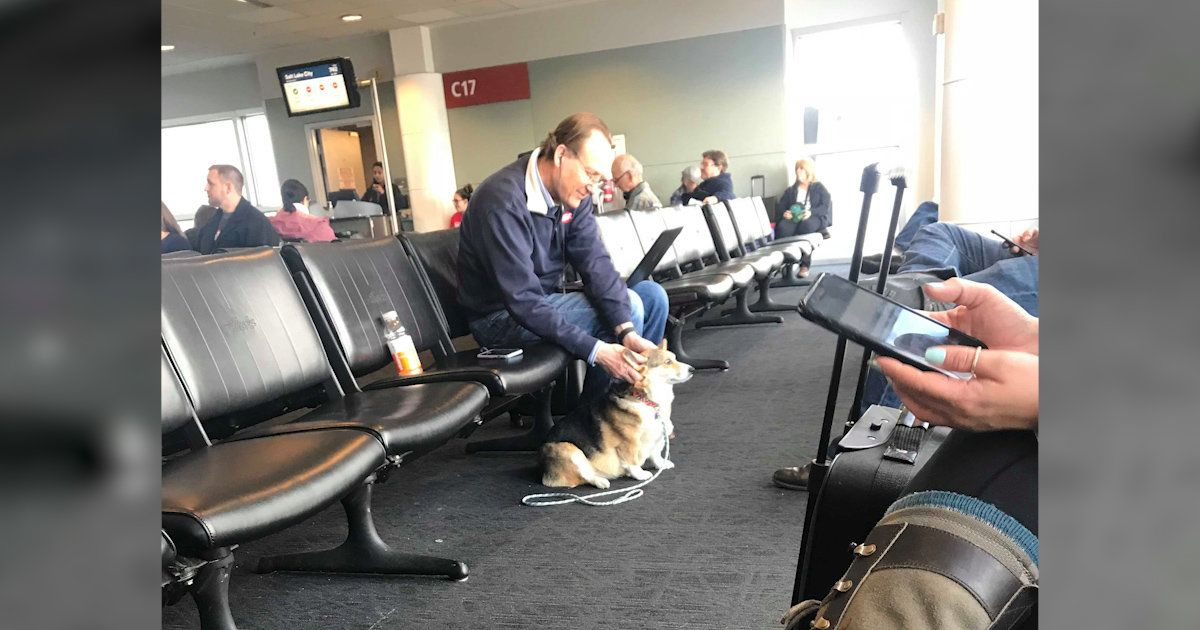 Cora, the sweetest corgi, saw a man in an airport – and instantly knew he needed comforting 💕 https://t.co/ChRkkxS8xt