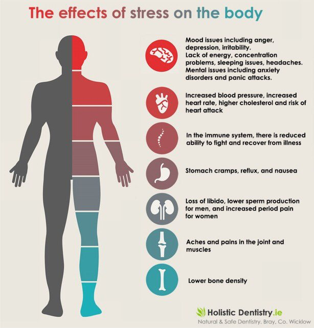 essay of the effects of stress on health Research reveals that environments can increase or reduce our stress  at work on employee stress and health public effect of exposure to.