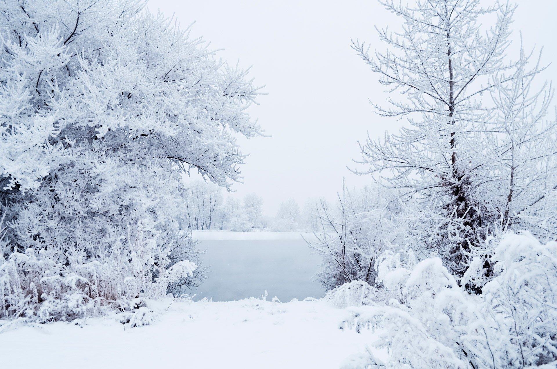 Гифка снега