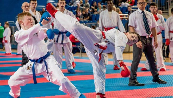Karate Ireland's photo on Arena