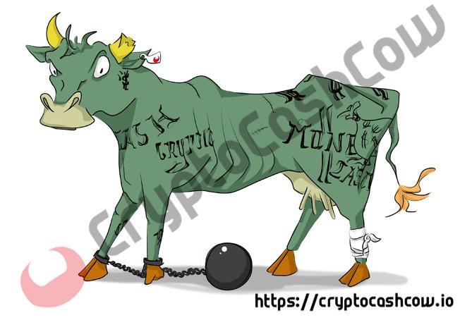 CryptoCashCow SCAMi cow