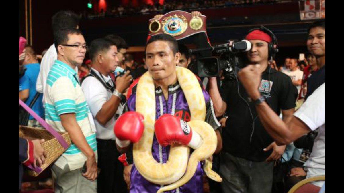 El filipino Donnie Nietes suele subir con una serpiente a cada una de sus peleas. Le preguntamos si lo hará el sábado en el Fórum de Los Ángeles. No le dieron la visa, respondió sonriendo