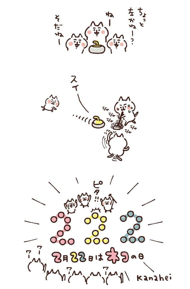 カーリングねーねーねこ #猫の日