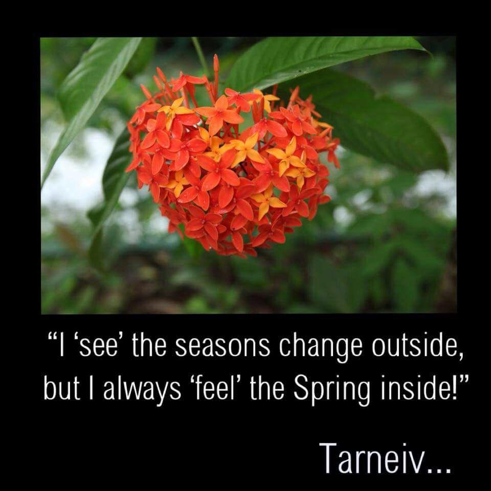 """""""I 'see' the seasons change outside but..."""