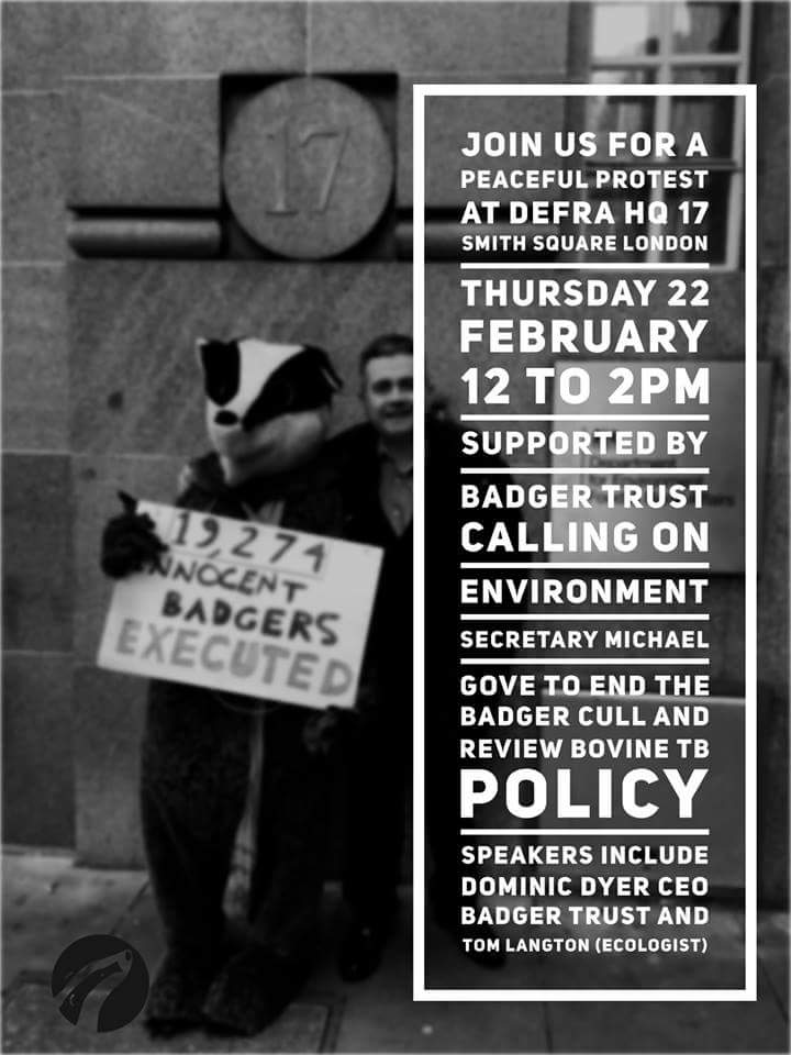 Make a stand for #badgers *TODAY* Defra...