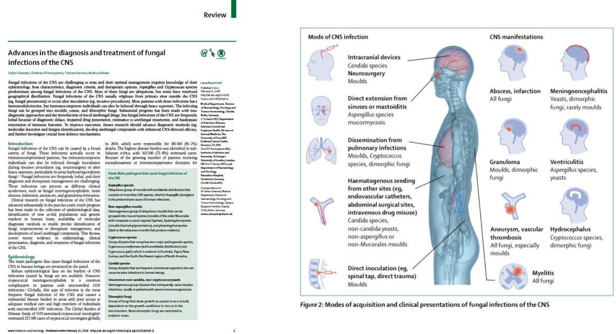 download Myocardial Ischemia and Lipid Metabolism 1985