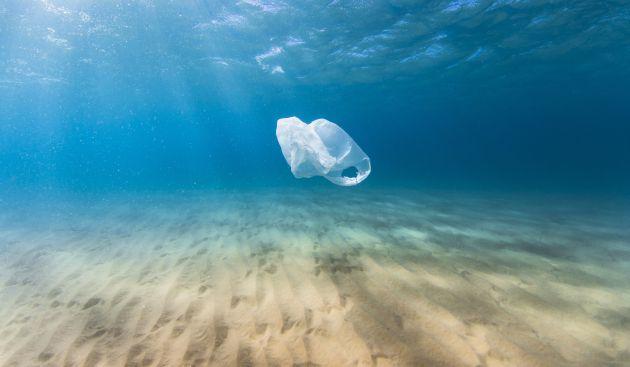 test Twitter Media - Una buena parte de los residuos plásticos acaban en el mar, lo que supone una gran amenaza para la Salud y el Medio Ambiente. Si seguimos a este ritmo, en el año 2050 en el mar habrá más plástico que peces. #sostenibilidad #plastico #Reciclaje #recicla #medioambiente https://t.co/N5fXCsvEAM