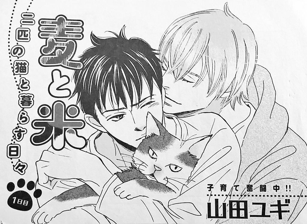 OPERAさんはBL誌なので、タイトルページだけいつも内容とは無関係の男子と猫が絡むイラストを描いていますが、漫画は基本的に二匹の猫と下僕(私)の日常エッセイです。