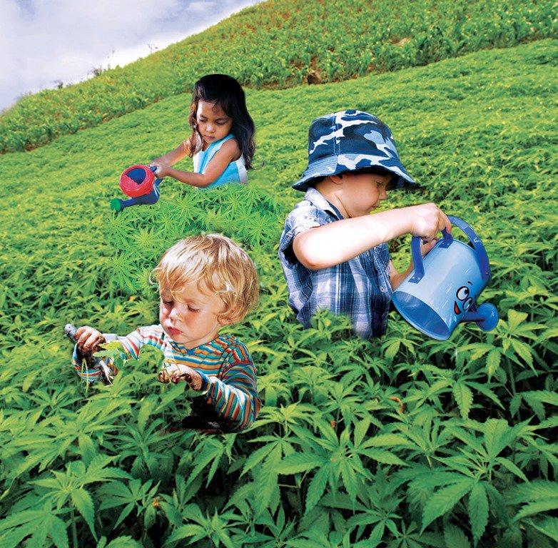 Дети матерей куривших коноплю перевод марихуана на русский