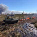 #USFWS firefighters plan to conduct a 130 acre prescribed fire today at Pocosin Lakes NWR #NCfire #rxfire #GoodFires 🔥