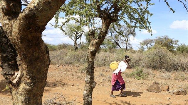 3.4 million #Kenyans #starving as #droug...