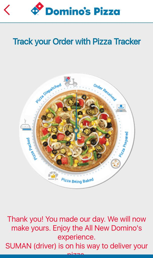 dominos sizzles with pizza tracker 1 what kinds of systems are described in this case identify and describe the business processes each supports describe the inputs, processes, and outputs of these systems.