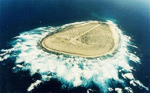 Les esclaves oubliés de l'île de Tromelin : Ils ont survécu pendant 15 ans en recréant une micro-société. Mais comment ont-ils pu survivre sur un minuscule îlot où il n'y a rien ?https://t.co/7Th1u6eNUi