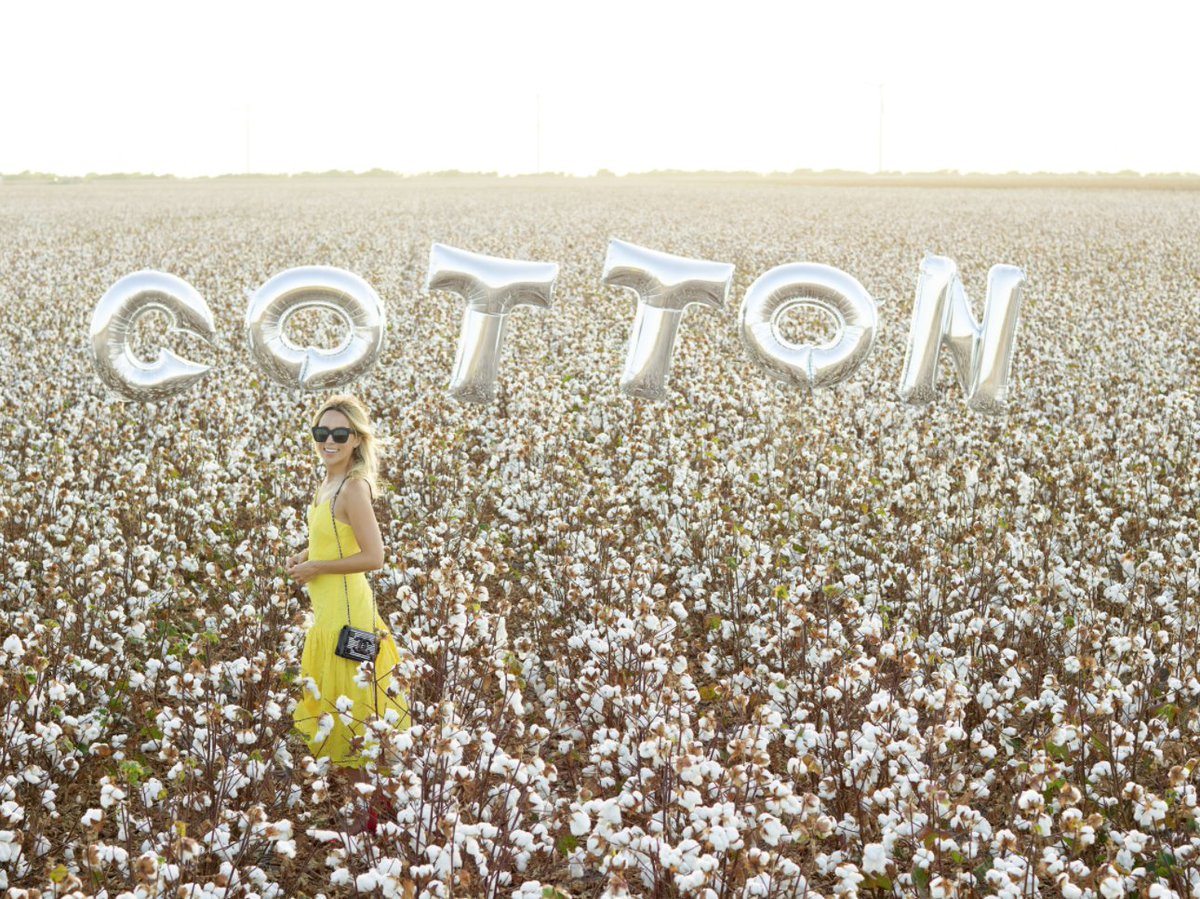 cotton the fabric of our lives