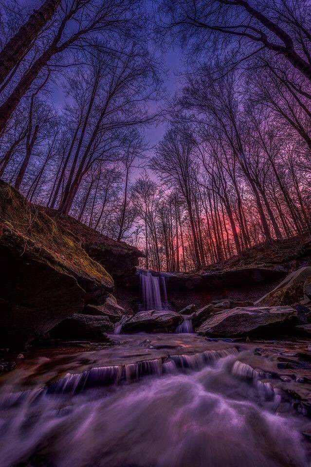 Purple light filtering through the forest at Cuyahoga Valley National Park by Cameron Schron #Ohio