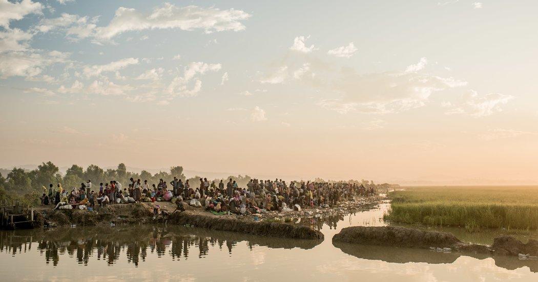 Rohingya twitter.