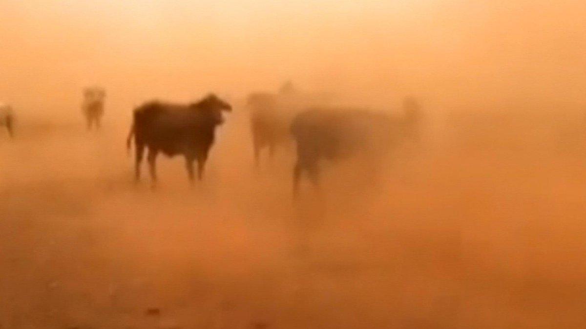 🎥 |En video: impresionante tormenta de a...