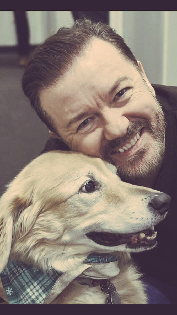 This weekend plan a visit to your local rescue shelter, where your new best friend is waiting for you 😊#adopt #rescue #LucysLaw @pupaid