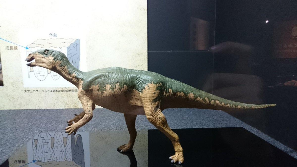 """古明地ぷてら ar Twitter: """"4ページ目 プロバクトロサウルス ..."""