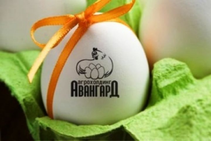 Polish egg producers alarmed with arrival of Avandard, 🇺🇦egg producer, to EU market https://t.co/VY71KWmvXn