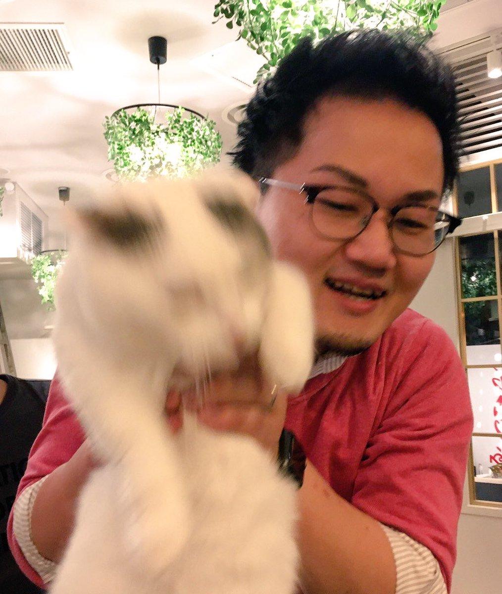 猫カフェMoCHA原宿店のアイドル・ごましお。可愛すぎて写真に収めることができない。 #はたおに